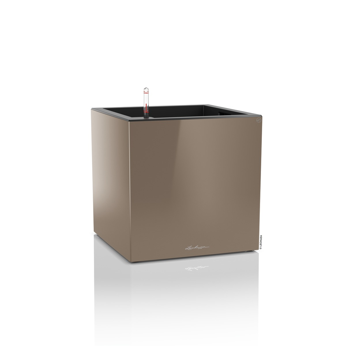 Cube Premium 50